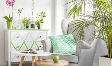 Come mantenere la casa fresca in estate