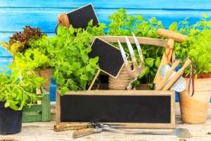 Ottimizza-lo-spazio-del-balcone-ricavando-un-piccolo-orto