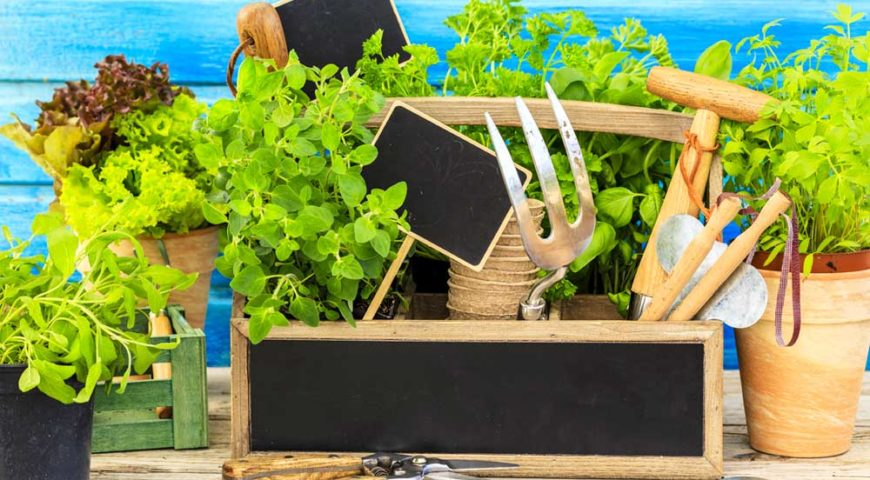 Ottimizza lo spazio del balcone ricavando un piccolo orto