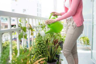 come-creare-un-giardino-in-casa-4